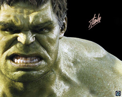 Stan Lee Autographed Incredible Hulk The Avengers 16x20 Photo