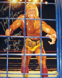 "Terry Bollea Hulk Hogan Autographed 16x20 Stat Photo ""Steel Cage"""