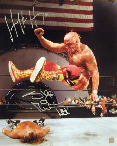 Hulk Hogan & Shawn Michaels Autographed 16x20 Photo