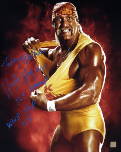 Terry Bollea Hulk Hogan Autographed 16x20 Stat Photo