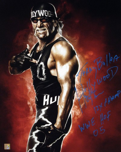 Terry Bollea Hollywood Hulk Hogan Autographed 16x20 Stat Photo